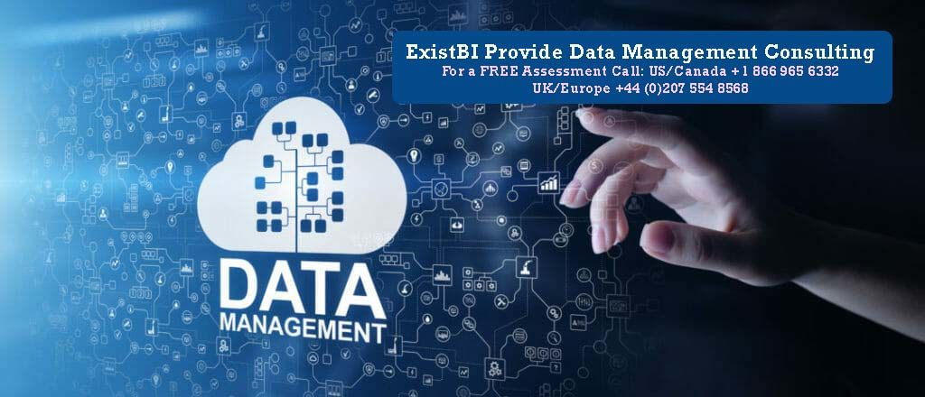 ExistBI Provides Data Management Consulting